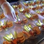 Firefly appetizer