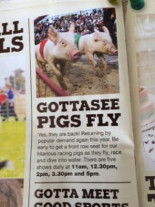 aussie brochue on pigs flying